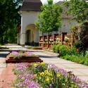 Санаторий Квитка полоныны - цветы