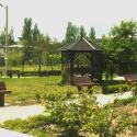 Пансионат Татьяна - аллея в парке